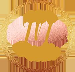 JN Artistry Logo